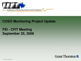 COSO Monitoring Project Update FEI - CFIT Meeting September 25, 2008