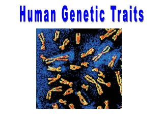 Human Genetic Traits