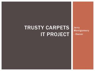 Trusty Carpets IT Project