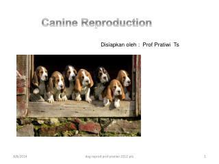 Canine  Reprodu ction