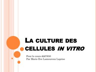 La  culture  des cellules  in vitro