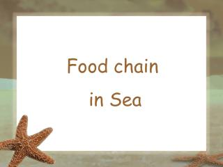 Food chain  in Sea