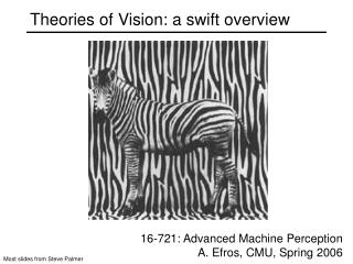 Theories of Vision: a swift overview