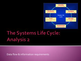 The Systems Life Cycle:  Analysis 2