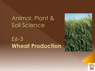 Animal, Plant &  Soil Science E6-3 Wheat Production
