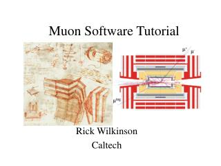 Muon Software Tutorial