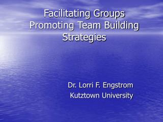 Facilitating Groups Promoting Team Building Strategies