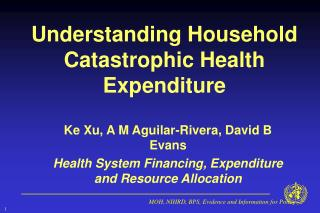 Understanding Household Catastrophic Health Expenditure