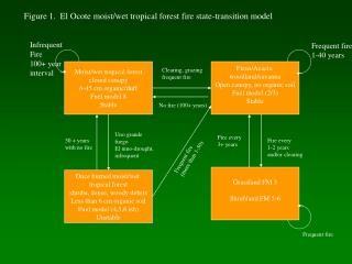 Figure 1.  El Ocote moist/wet tropical forest fire state-transition model