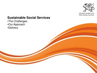 Sustainable Social Services The Challenges Our Approach Delivery