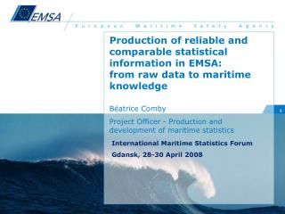 Production of reliable and comparable statistical information in EMSA: