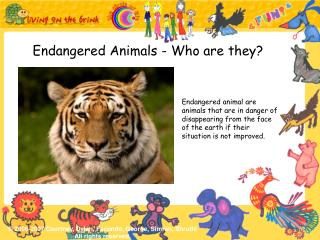 Endangered Animals - Who are they?