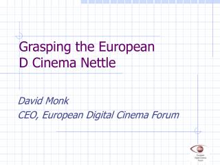 Grasping the European D Cinema Nettle