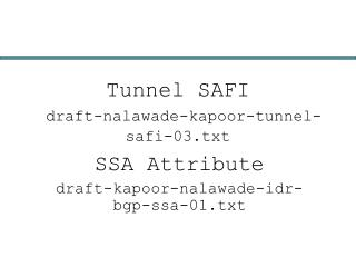 Tunnel SAFI draft-nalawade-kapoor-tunnel-safi-03.txt