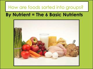 How are foods sorted into groups?