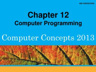 Chapter 12 Computer Programming