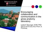 Encouraging collaboration and communication in the gross anatomy laboratory