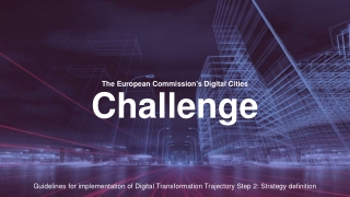 The European Commission's Digital Cities Challenge
