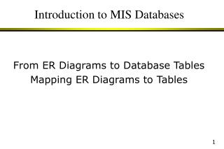 Introduction to MIS Databases