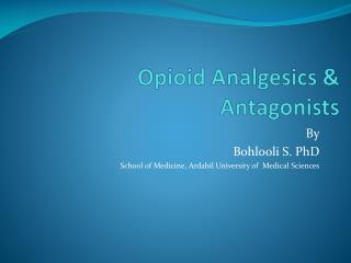 Opioid Analgesics & Antagonists