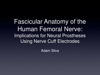 Fascicular Anatomy of the Human Femoral Nerve:  Implications for Neural Prostheses Using Nerve Cuff Electrodes