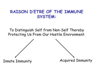RAISON D'ETRE OF THE IMMUNE SYSTEM: To Distinguish Self from Non-Self Thereby  Protecting Us From Our Hostile Environm