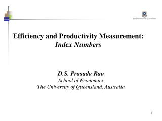 Efficiency and Productivity Measurement: Index Numbers