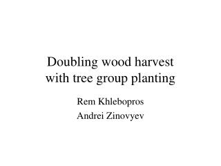 Doubling wood harvest  with tree group planting