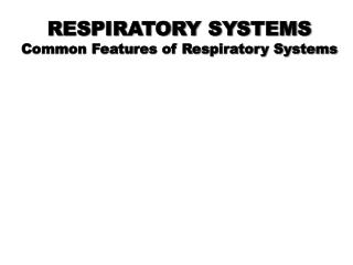 RESPIRATORY SYSTEMS Common Features of Respiratory Systems