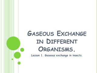 Gaseous Exchange in Different Organisms.