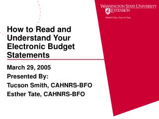How to Read and Understand Your Electronic Budget Statements