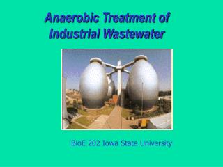 Anaerobic Treatment of Industrial Wastewater