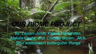 OUR BIOME PROJECT