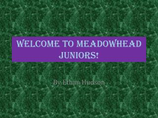 Welcome to  Meadowhead juniors!