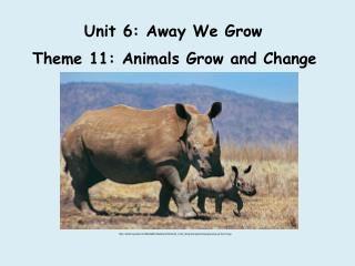 Unit 6: Away We Grow
