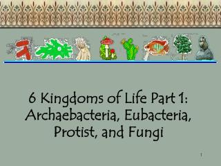 6 Kingdoms of Life Part 1: Archaebacteria, Eubacteria, Protist, and Fungi