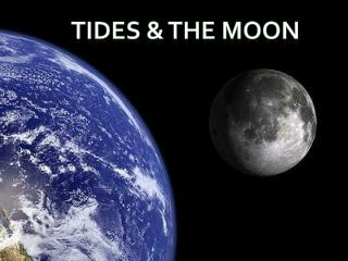 Tides & the moon