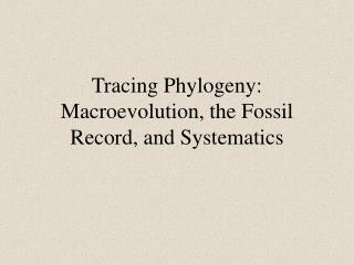 Tracing Phylogeny: Macroevolution, the Fossil Record, and Systematics