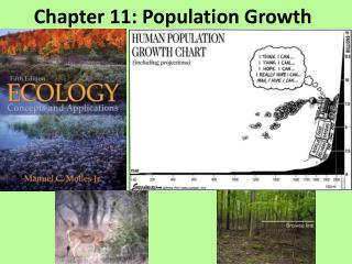 Chapter 11: Population Growth