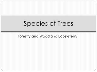 Species of Trees