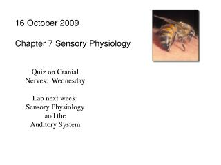 16 October 2009 Chapter 7 Sensory Physiology