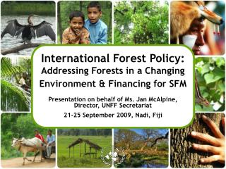 International Forest Policy:  Addressing Forests in a Changing Environment & Financing for SFM