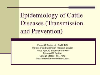 Epidemiology of Cattle Diseases (Transmission and Prevention)