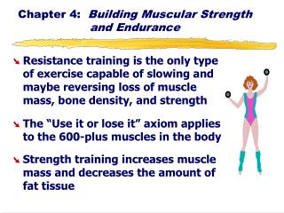 Chapter 4:   Building Muscular Strength and Endurance