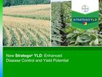 New Stratego  YLD: Enhanced Disease Control and Yield Potential