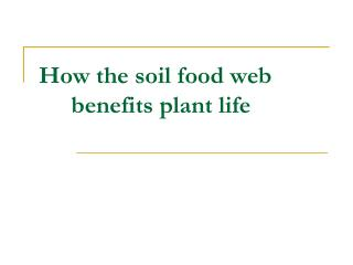 How the soil food web benefits plant life