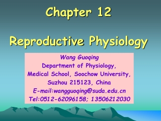 Chapter 12 R eproductive P hysiology