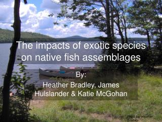 The impacts of exotic species on native fish assemblages