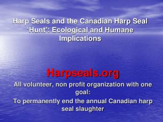Harp Seals and the Canadian Harp Seal 'Hunt': Ecological and Humane Implications
