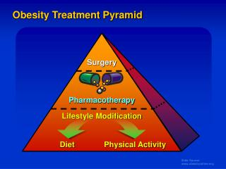Obesity Treatment Pyramid